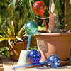 Watering Globes - 4pc Deluxe Set watering globes